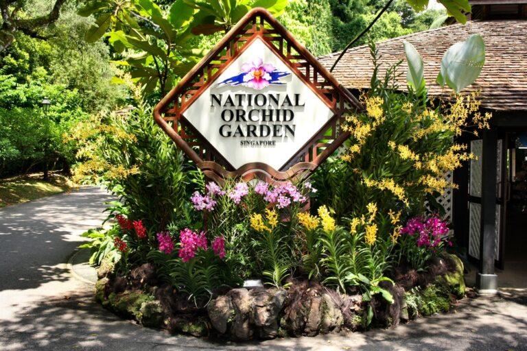 Национальный сад орхидей в Сингапуре