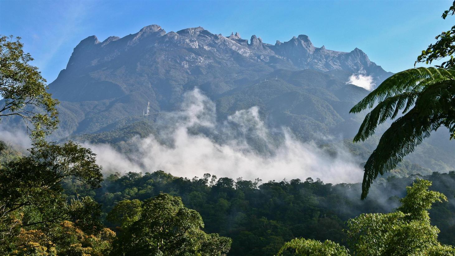 Лучшие национальные парки Малайзии
