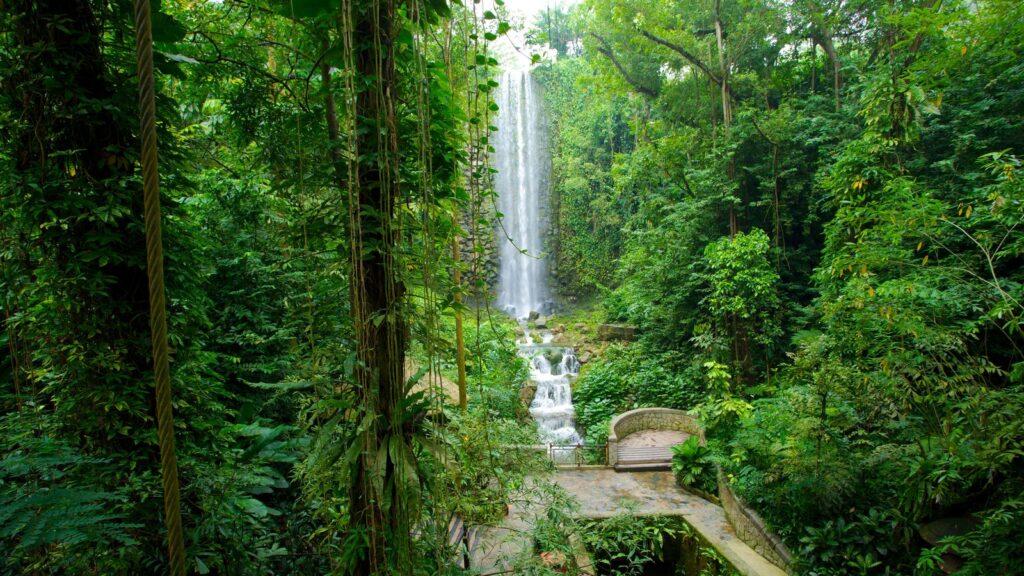 Водопад в парке птиц Джуронг в Сингапуре