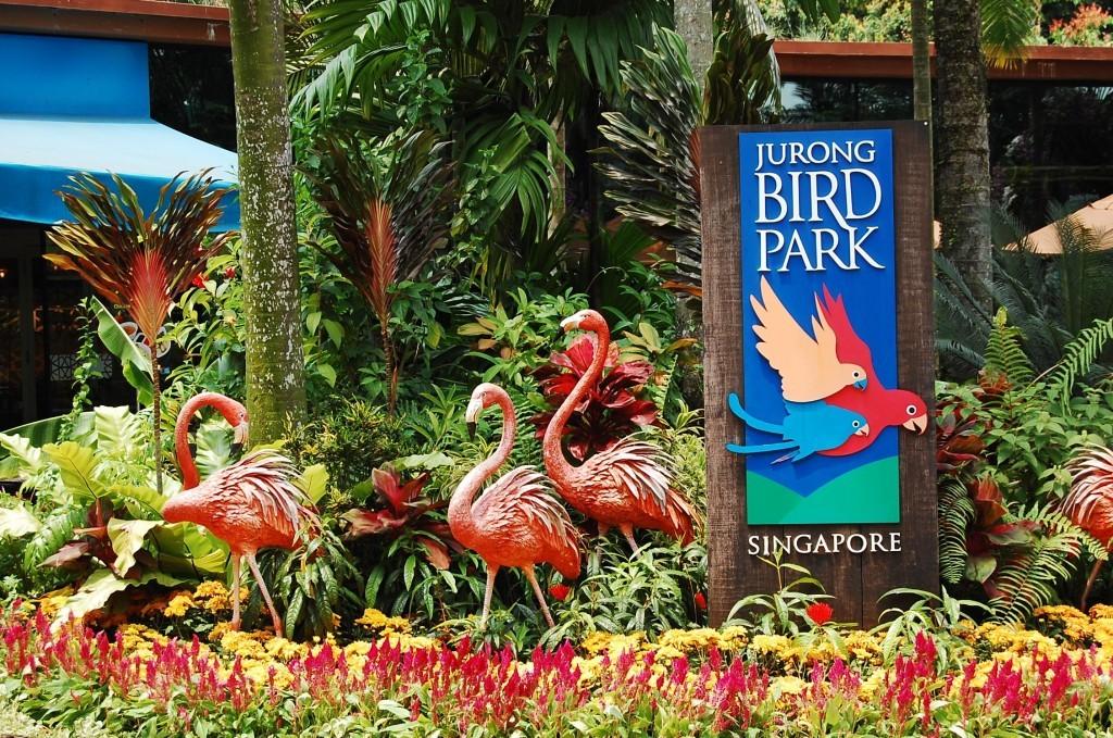 Парк птиц Jurong в Сингапуре