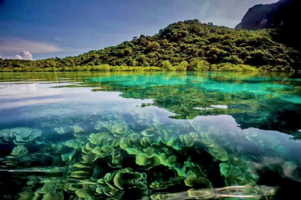 Тур в Морской парк Тун Сакаран в Малайзии