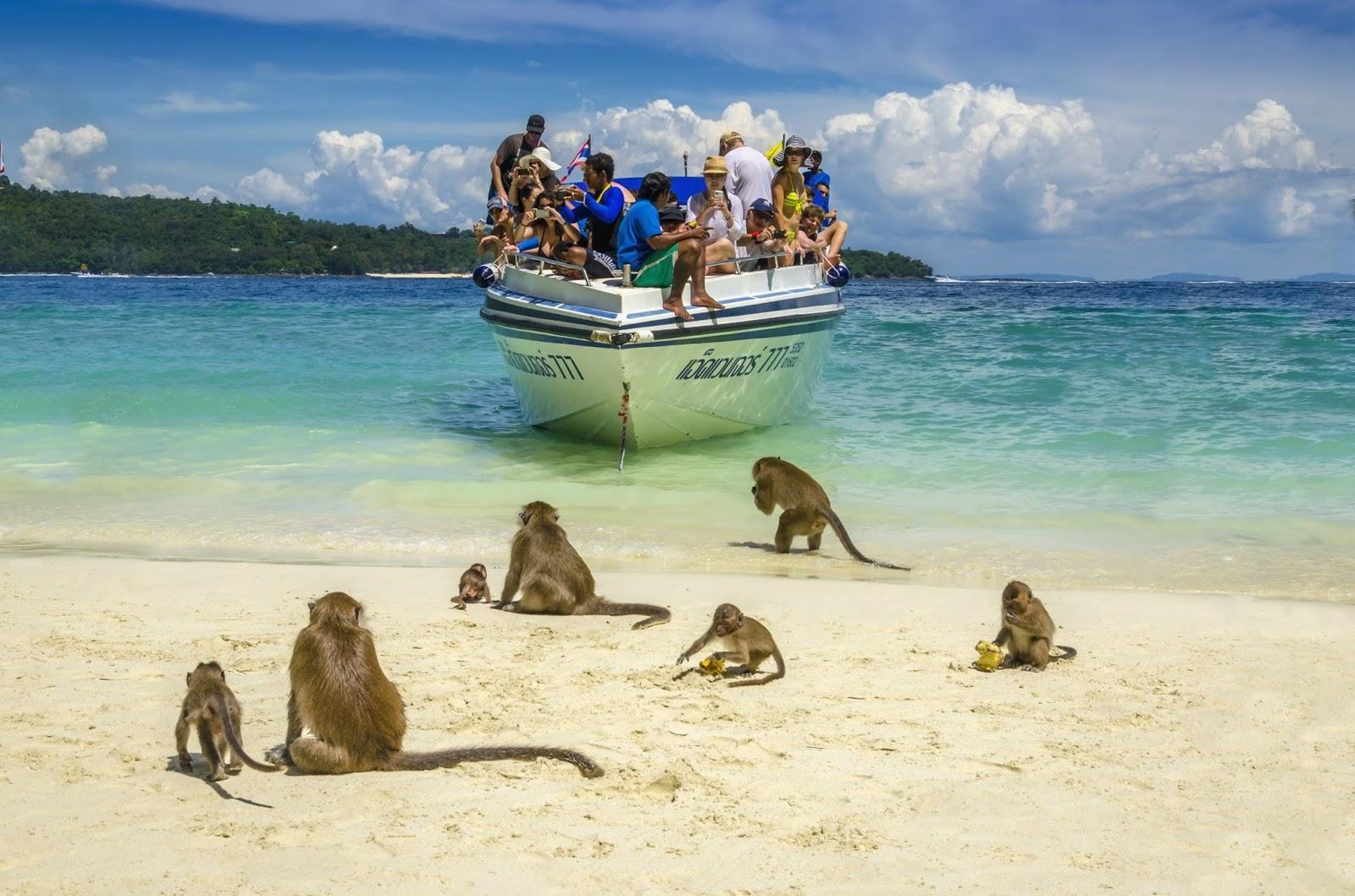 Лучшие пляжи Пенанга для туристов