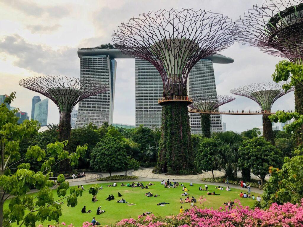 Футуристический парк Сады у залива в Сингапуре
