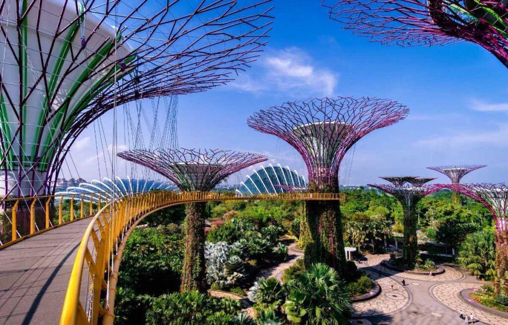 Подвесной мост в парке Сады у залива в Сингапуре