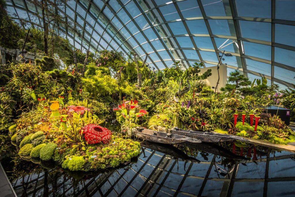 Оранжерея в парке Сады у залива В Сингапуре