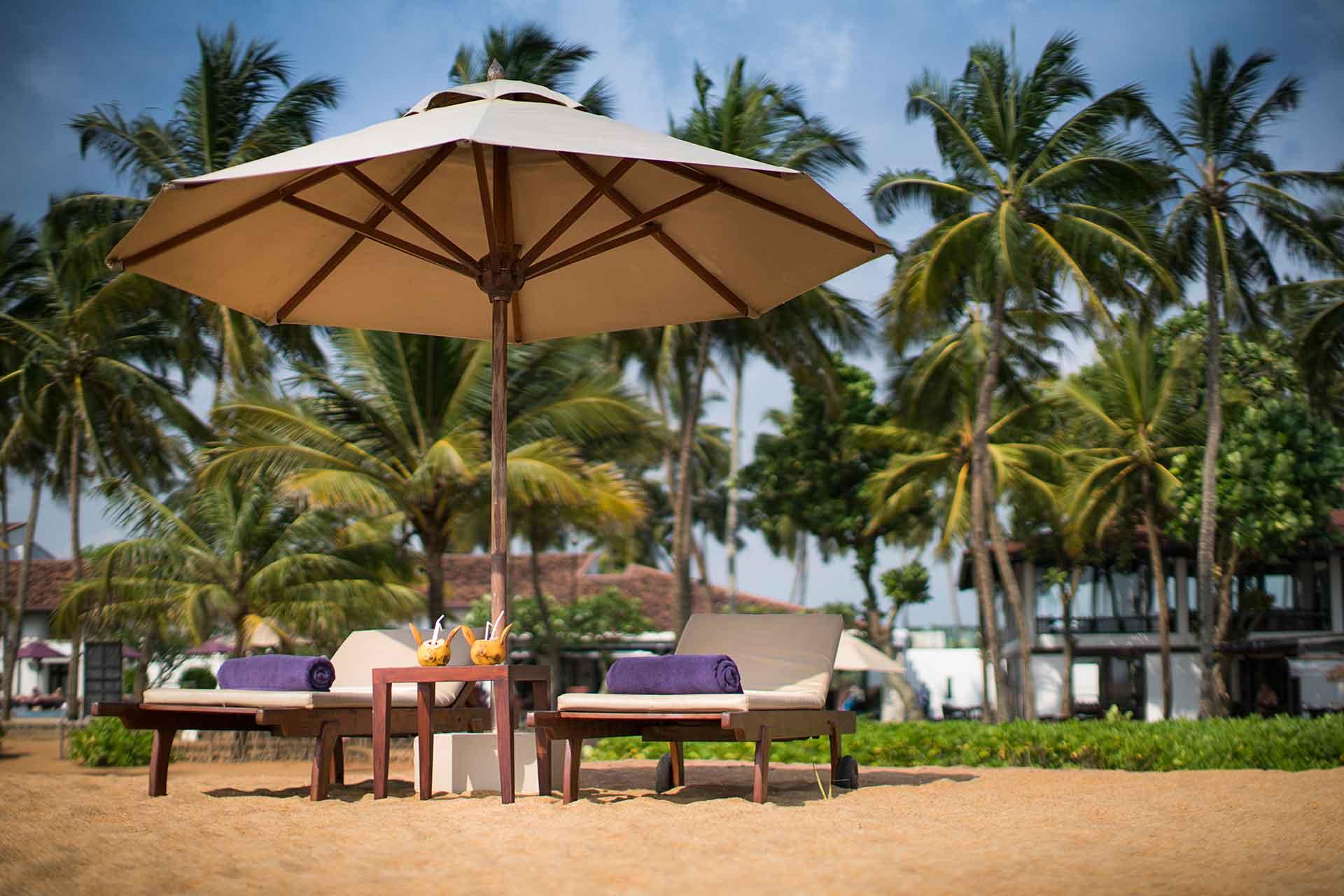 Отдых в Каллутаре (шри-Ланка)