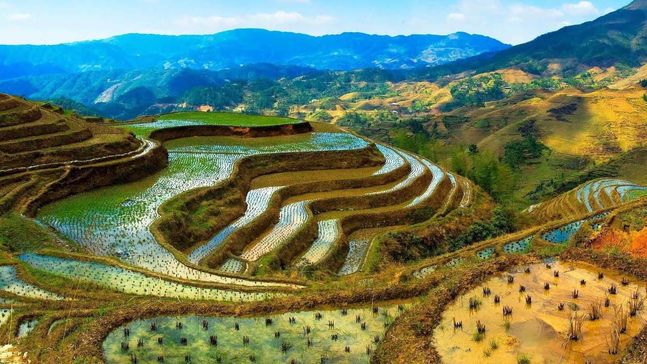 Рисовые террасы на Филиппинских Кордильерах