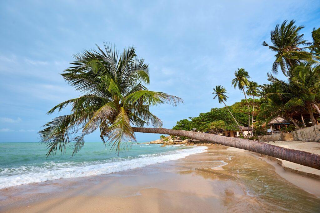 Пляж Тонгсон на Самуи в Таиланде