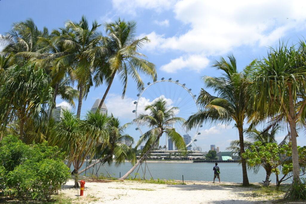 В какой сезон отдыхать в Сингапуре