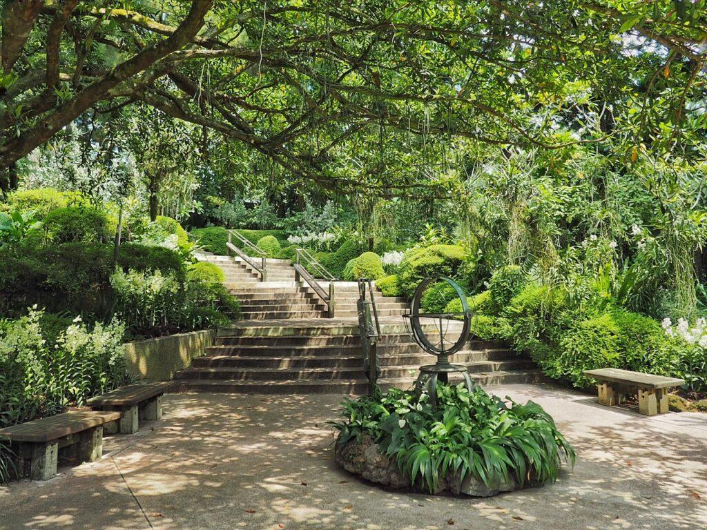 Аллея в Сингапурском саду орхидей