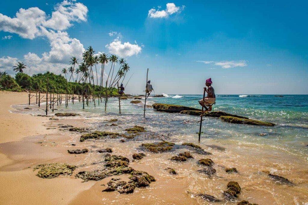 Отдых на Шри-Ланке с детьми