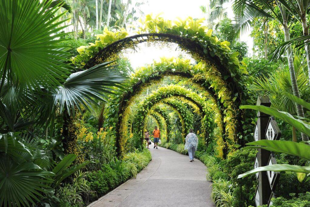 Сад орхидей в Сингапуре для туристов