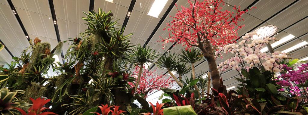 Аэропорт Changi
