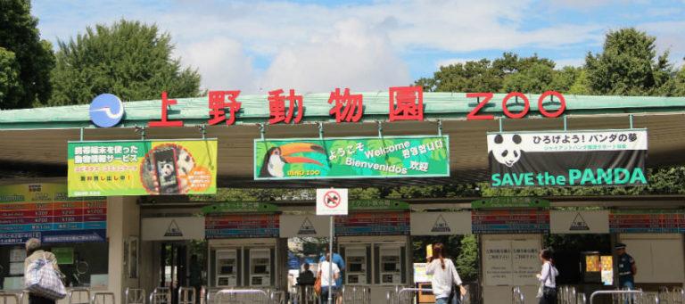 Зоопарк в Пекине
